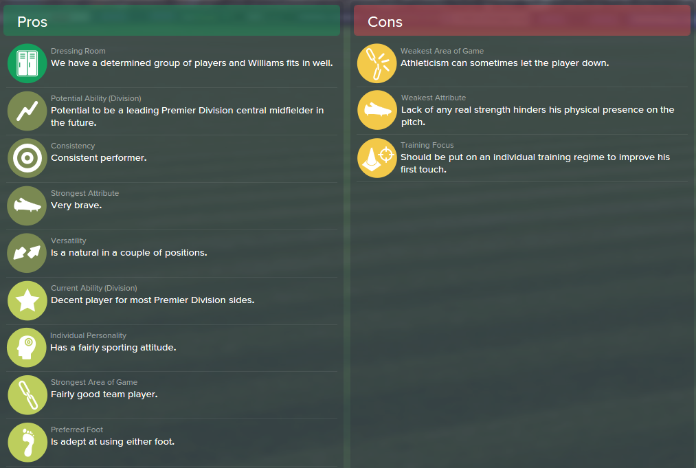 Jonny Williams, FM15, FM 2015, Football Manager 2015, Scout Report, Pros & Cons
