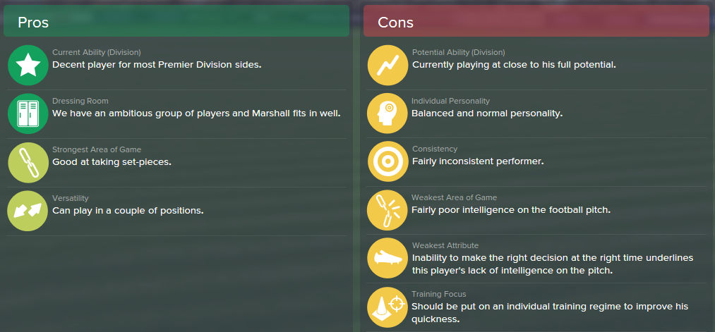 Ben Marshall, FM15, FM 2015, Football Manager 2015, Scout Report, Pros & Cons