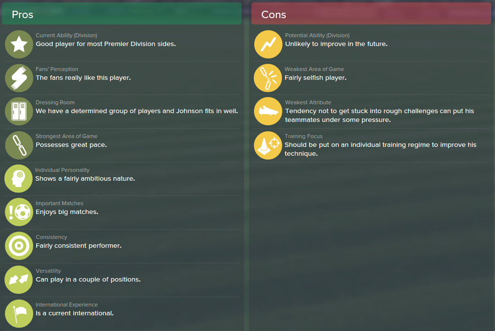Adam Johnson, FM15, FM 2015, Football Manager 2015, Scout Report, Pros & Cons